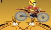 لعبة سباق دراجة الادغال الجديدة