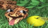 لعبة الثعبان و الارنب