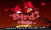 لعبة طيور غاضبة
